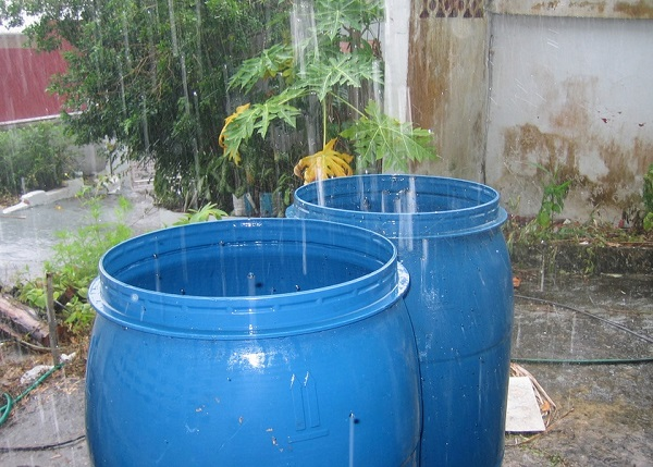 Rainwater Harvesting Why You Should Do It And How Guest