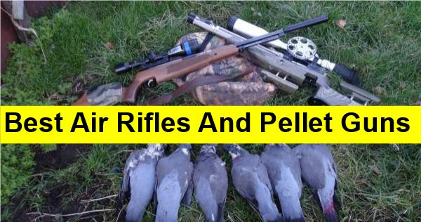 Best Air Rifles And Pellet Guns For Survival (+ 5 Reasons Why)