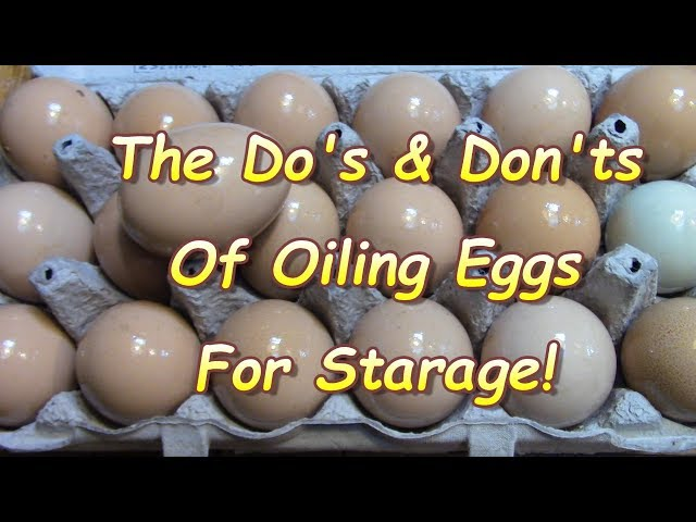 What you May NOT know About Preserving Eggs