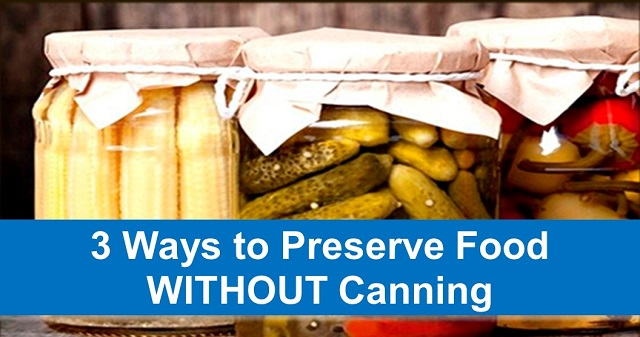 3 Ways to Preserve Food WITHOUT Canning