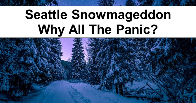 Seattle Snowmageddon – Why All The Panic?