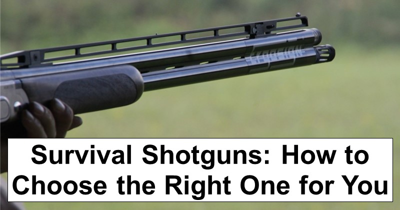 Survival Shotguns: How to Choose the Right One for You