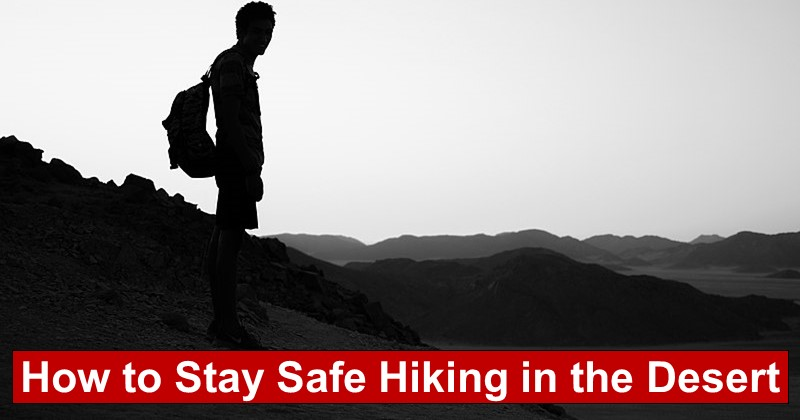 How to Stay Safe Hiking in the Desert