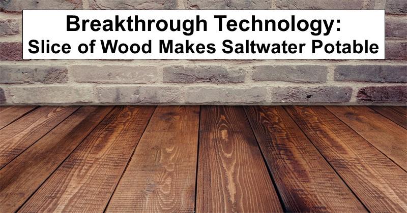 Breakthrough Technology: Slice of Wood Makes Saltwater Potable