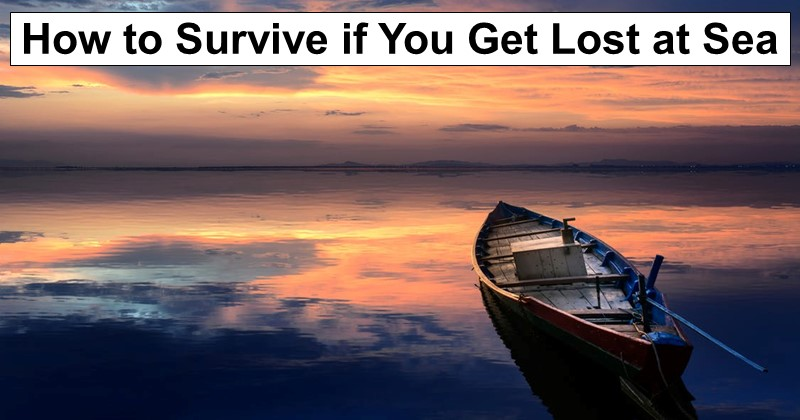 How to Survive if You Get Lost at Sea
