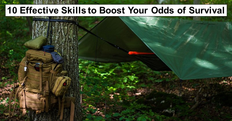 10 Effective Skills to Boost Your Odds of Survival